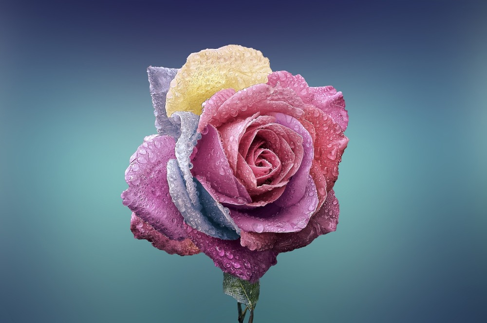 definizione di bellezza di valentinasbarazzina.blog