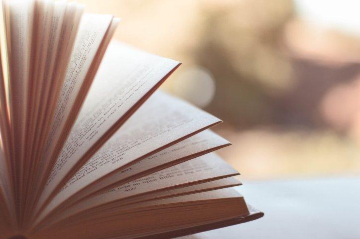 l'importanza della lettura di valentinasbarazzina.blog